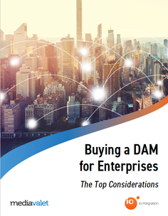 Buying_DAM_cover