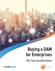 Buying_DAM_cover