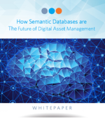 How Semantic Databases Are The Future Of Digital Asset Management - Ebook Cover